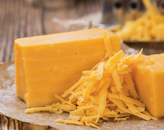 위염 치즈